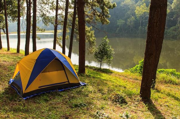 タイ北部、メホンソン県パンガン林業プランテーションでの森林松でのキャンプ