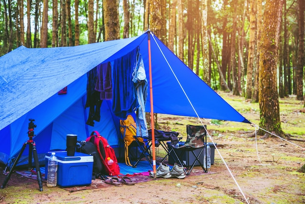 Camping on the at national park doi intanon in thailand.