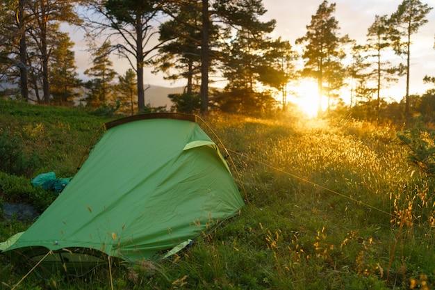 Кемпинг в лесу на закате или восходе солнца. яркий солнечный свет. палатки и лесные деревья. понятие релаксации, праздников, отдыха, медитации и отдыха.