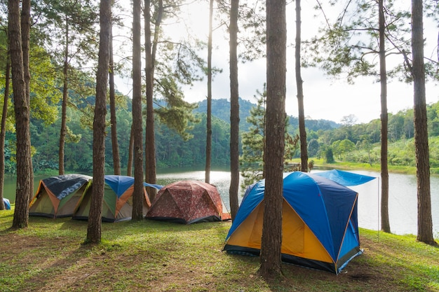 Camping tent on the grass