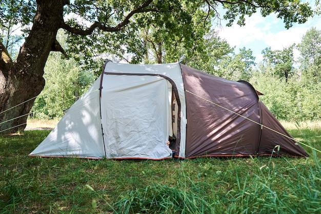 夏の日の松林のキャンプテント