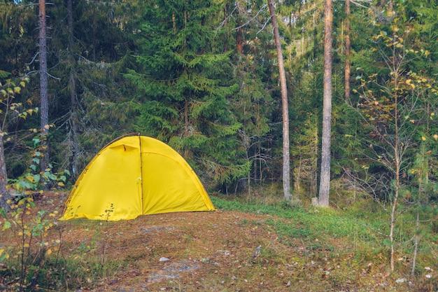森の中のキャンプテント。観光の概念。