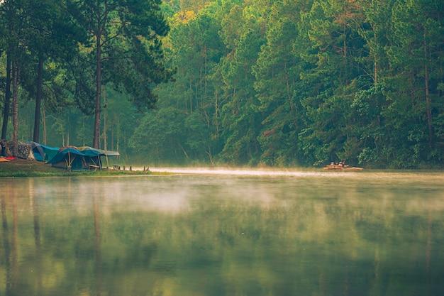 タイ北部の日没で松林の下の湖の近くのキャンプテント