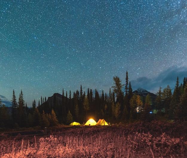 Кемпинг-палатка со звездным небом под ночным небом в осеннем лесу на территории кемпинга в национальном парке