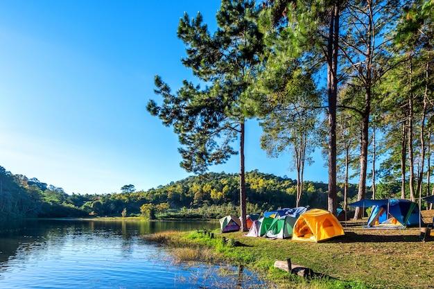 Tende da campeggio sotto gli alberi di pino con la luce del sole al lago pang ung, mae hong son in thailandia.