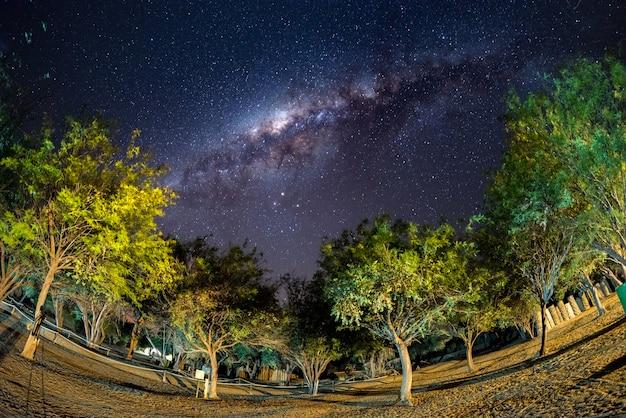 Лагерь под звездным небом и дугой млечного пути, с деталями его яркого, невероятно яркого ядра, захваченного в южной африке. приключение в дикую природу.