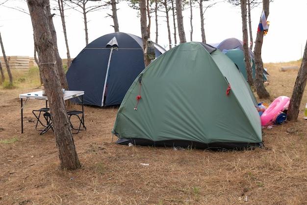 Кемпинг в лесу с множеством палаток