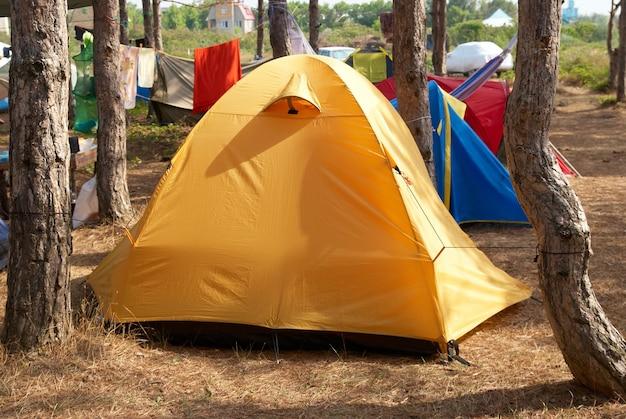 텐트가 많은 숲 속의 야영장