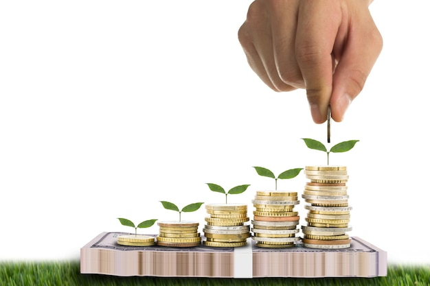 Можно залить растущим растением деньгами для экономии вашего бюджета.