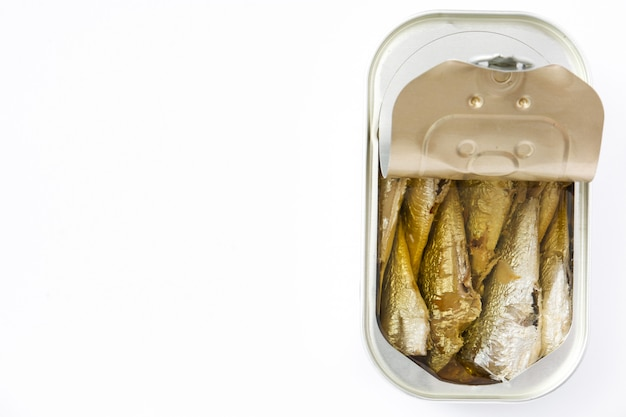 Can of sardines isolated on white with copy space