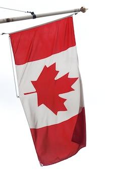 캐나다 국기 절연