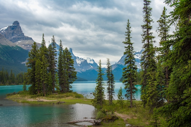 Canada forest landscape of spirit island with big mountain in the background, alberta, canada.