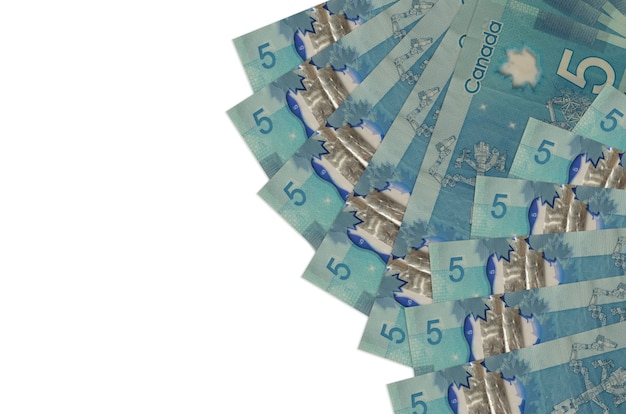 Canadian dollar bills on a white background