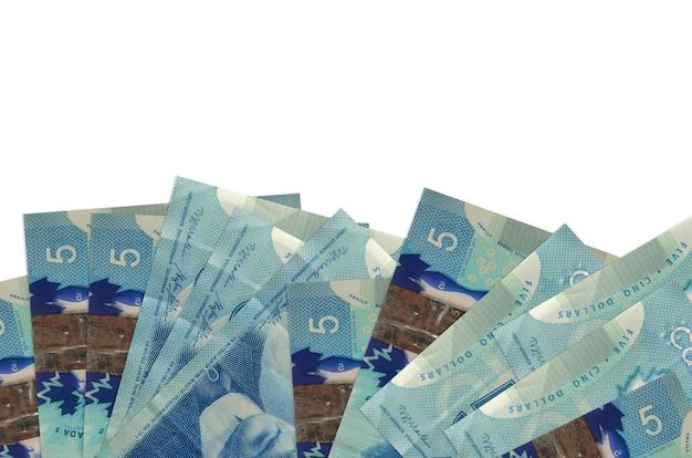 Canadian dollars bills laying on white surface
