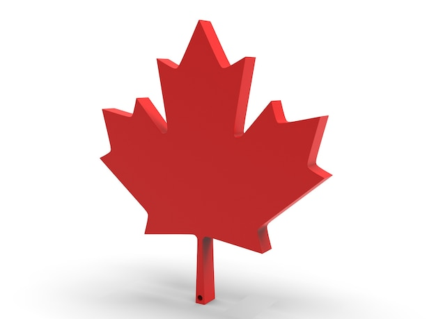 Canadian maple leaf on white background