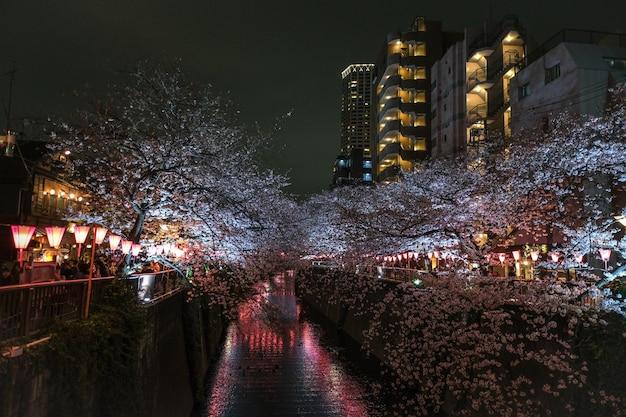 아름다운 나무로 장식되고 고층 빌딩으로 둘러싸인 운하