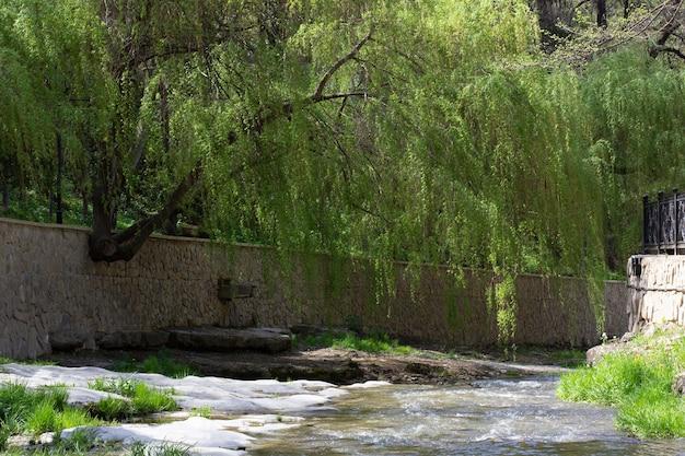 공원에있는 도시의 운하