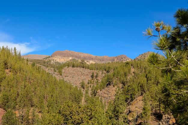 카나리아 섬 자연 공원 스페인. 테이데 테네리페