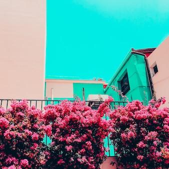 カナリア諸島。旅行のコンセプト。熱帯の花