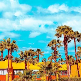 Canary island travel palm tropical vibes
