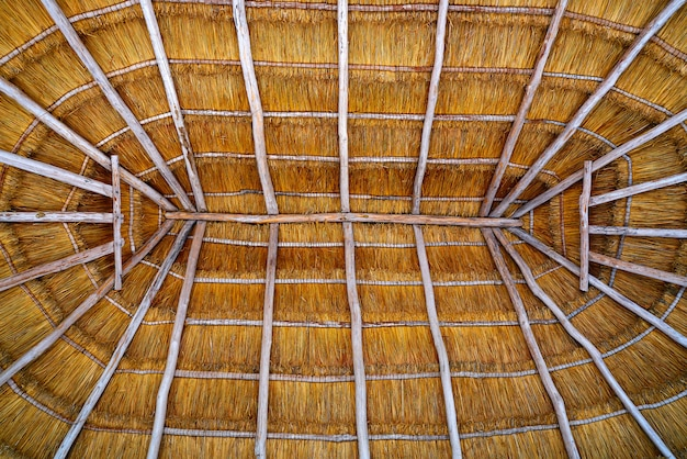 Cancun palapa roof hut dried grass