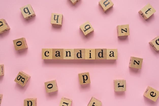 나무 블록에 칸디다 단어입니다.