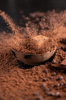 Candies chocolate truffle in cocoa powder natural dessert sweets meal snack on the table copy space