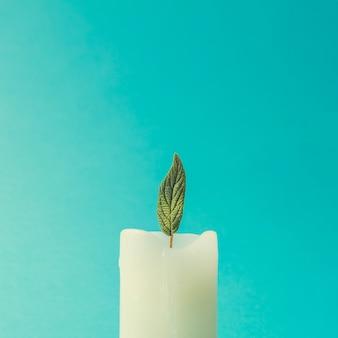 Свеча с зеленым листом как пламя. минимальная весенняя концепция природы.
