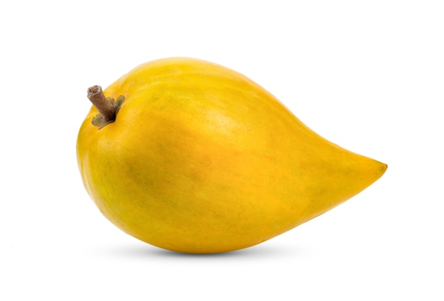Canistel fruit (egg fruit, tiesa, yellow sapote, canistelsapote, chesa, pouteria lucuma) isolated on white background