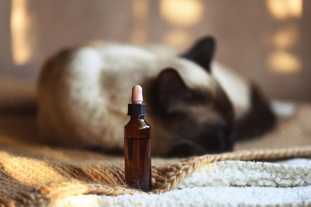 Canister of cbd hemp oil for domestic cat
