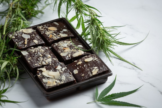 Cannabis brownies and cannabis leaves put on white floor