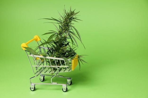 買い物かごの中の大麻ブッシュ