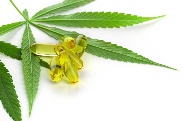 Cannabis essential oil capsules on white background.