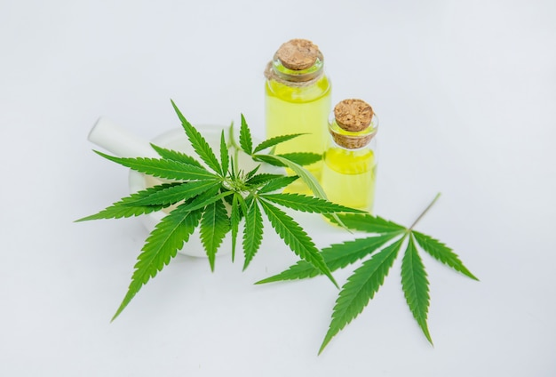 Траву и листья конопли для лечения отваром, настойкой, экстрактом, маслом.