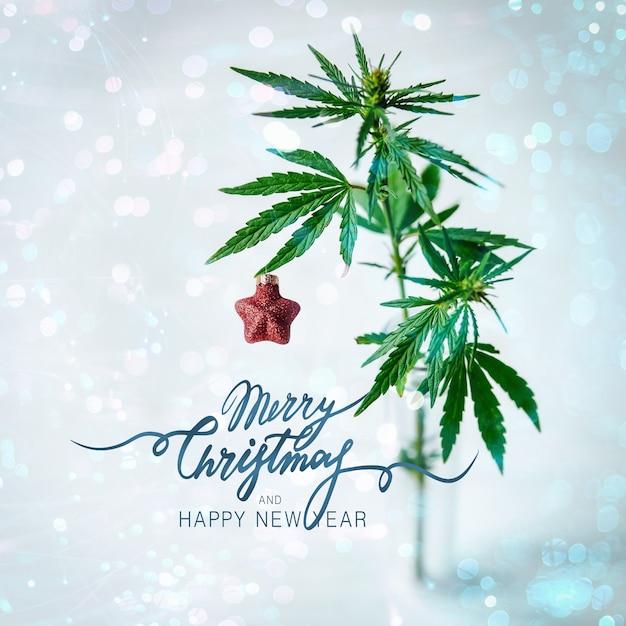 대마초 잎과 덤불에는 크리스마스 장식이 있습니다. 축제 배경입니다. 메리 크리스마스 레터링 광장