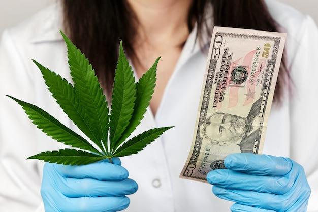 Лист конопли и банкнота в пятьдесят долларов в руках женщины в резиновых перчатках и халате медицинской лаборатории. доходы от продуктов, изготовленных из концепции каннабиса.