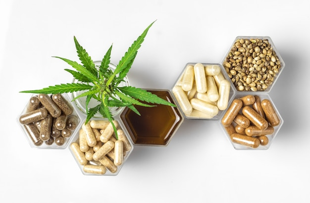 Cannabis medicine capsules, hemp oil and seeds and green plant in honeycomb jars on white background