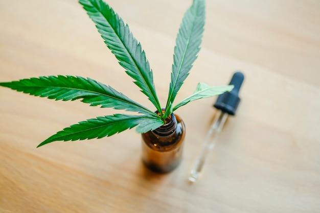 Cannabis oil (cannabidiol cbd).