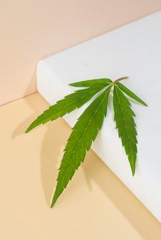 Cannabis plant leaf arrangement