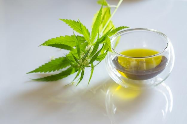 화이트에 대마초 종자 기름과 녹색 식물