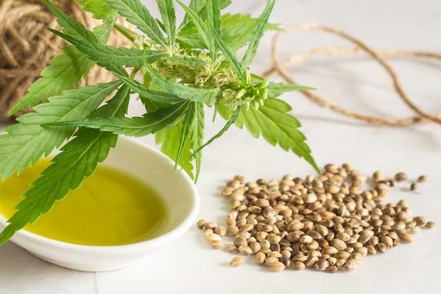 화이트에 대마초 종자 기름, 타래 및 녹색 식물