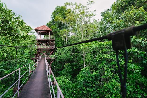 Canopy walkway в ботаническом саду полуострова (thung khai), провинция транг, таиланд.