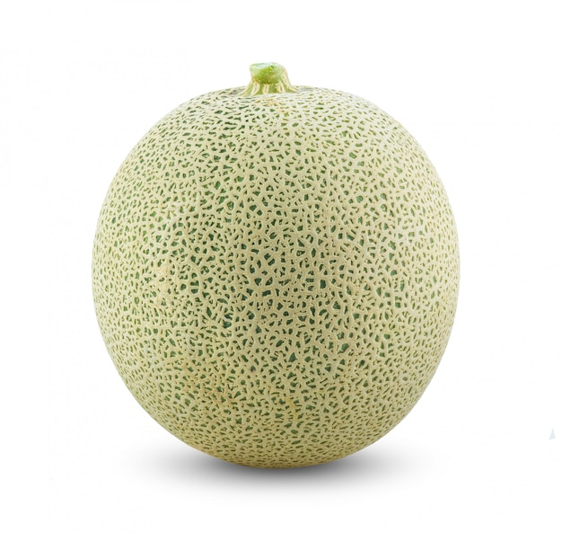 Cantaloupe melon on white wall