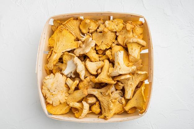 Cantharellus cibarius, chanterelle 버섯 세트, 나무 상자 컨테이너, 흰색 돌 테이블 배경, 평면도