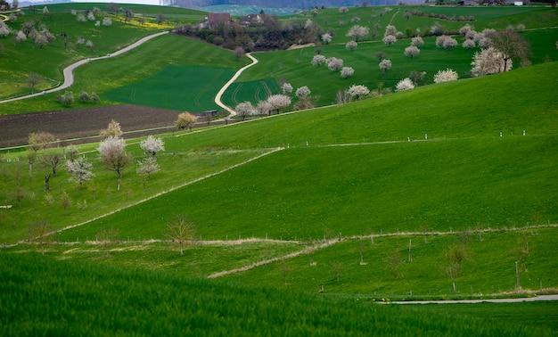 Canton basel country, olsberg ag, surrounding of arisdorf, landscape