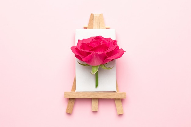 Canvas for painting with rose flower on pink