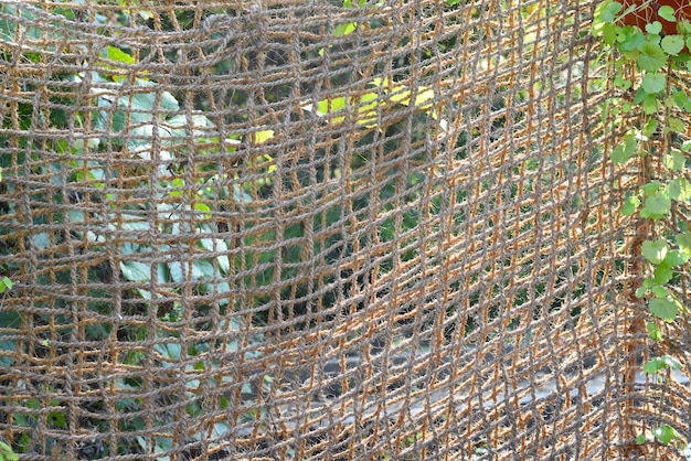 Canvas rope mesh under sunlight