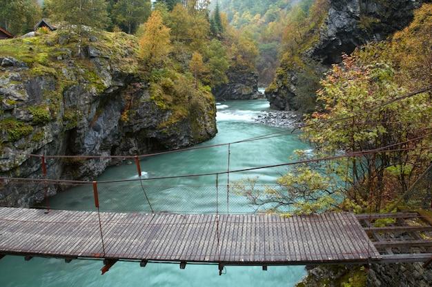 ノルウェーの秋の森の峡谷と吊橋
