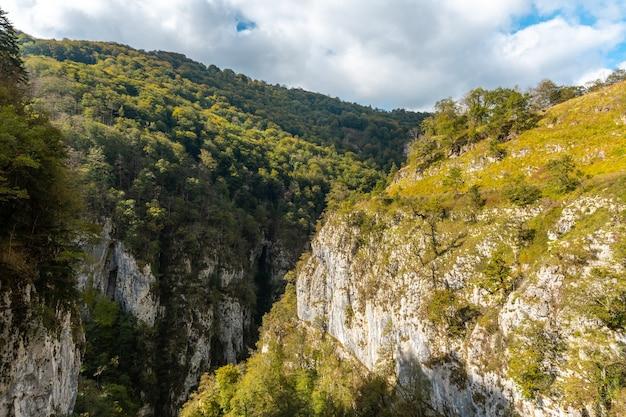ラローのpasserelleholtzarteの峡谷。スペインのナバラとピレネーアトランティックの北にあるイラティの森またはジャングルで