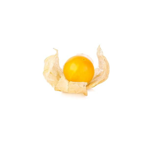 白で分離されたケープグーズベリー(physalis)